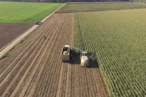 aerial crop view